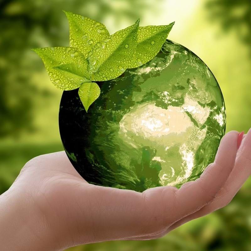 Afbeelding Duurzaam Q1 Rapport 2020 Groen